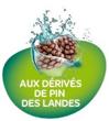 Picto Derives Pin Des Landes